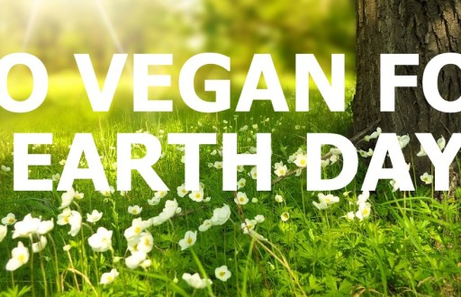 7 Reasons Why You Should Go Vegan on Earth Day!